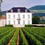 Chateau Puligny Montrachet