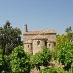 Château de Saint Cosme