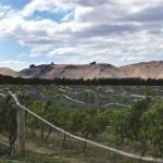 Escarpment