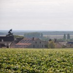 About Domaine Latour-Giraud